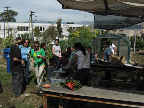 Proyecto Jardin work day feb 28