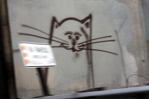pfcats3