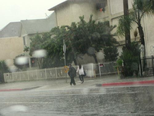 rainlovers2